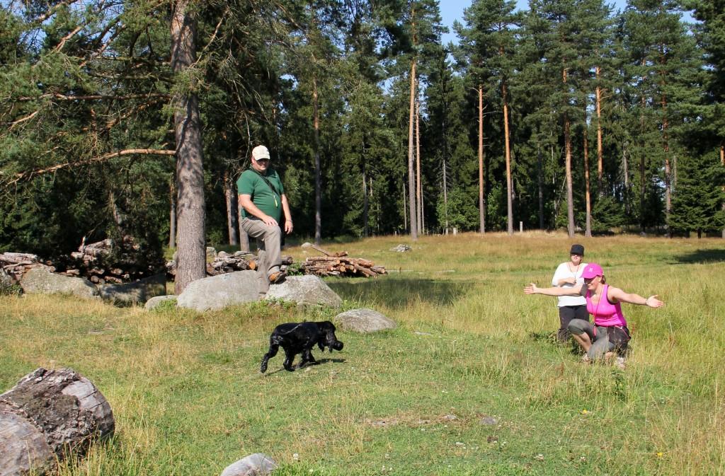 Enya palauttaa dummyn vesinoudon jälkeen. kuvaaja: Tiina Karlström
